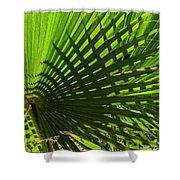 Palm Pattern No.1 Shower Curtain