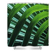 Palm Patterns Shower Curtain