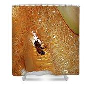 Palm Pollination Shower Curtain