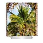 Palm Portrait Shower Curtain