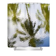 Palm Reflections Shower Curtain