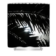 Palm Silhouettes Kaanapali Shower Curtain