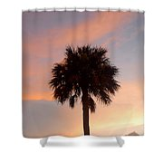 Palm Sky Shower Curtain