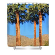 Palm Springs Shower Curtain