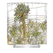 Palm Tree 1 Shower Curtain