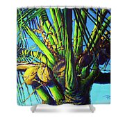 Palm Tree At Sunset Shower Curtain