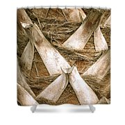 Palm Tree Bark Shower Curtain