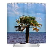 Palm Tree By The Lake Shower Curtain