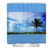 Palm Tree Dream Delray Beach Florida Shower Curtain