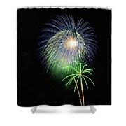 Palm Tree Fireworks Shower Curtain