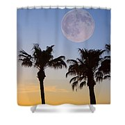 Palm Tree Full Moon Sunset Shower Curtain