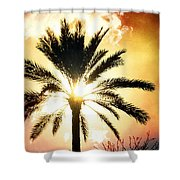 Palm Tree In The Sun #2 Shower Curtain