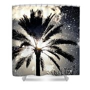 Palm Tree In The Sun #3 Shower Curtain