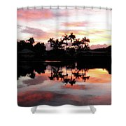 Palm Tree Inlet 2 Shower Curtain