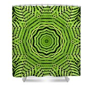 Palm Tree Kaleidoscope Abstract Shower Curtain