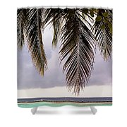 Palm Tree Leaves At The Beach Shower Curtain