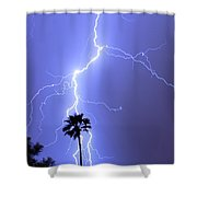Palm Tree On Strike Shower Curtain