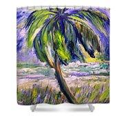 Palm Tree On Windy Beach Shower Curtain