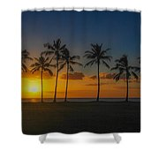 Palm Tree Paradise Shower Curtain