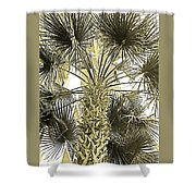 Palm Tree Pen And Ink Grayscale With Sepia Tones Shower Curtain