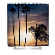 Palm Tree Sunset Silhouette Shower Curtain