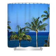 Palm Tree Tops Shower Curtain