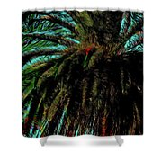 Palm Trees 40 Version 2 Shower Curtain