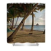 Palm Trees And Hammock On San Pedro Shower Curtain