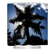 Palm Trees In Silhouette Shower Curtain