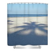 Palm Trees Over Fort Myers Beach Fort Myers Florida Shower Curtain