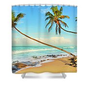 Palm Trees Over The Sea Shower Curtain