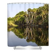 Palm Trees Reflections Shower Curtain