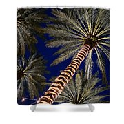 Palm Trees Wrapped In Lights Shower Curtain
