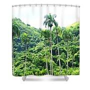 Palmas En Caonillas Shower Curtain