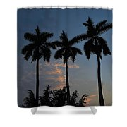 Palmeras Ahuachapan Shower Curtain
