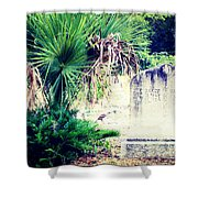 Palmetto And Head Stone Shower Curtain
