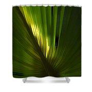 Palmetto Embrace Shower Curtain