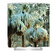Palmetto Row Shower Curtain