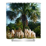 Palmetto Tree  Shower Curtain