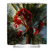 Palm's A Glow Shower Curtain