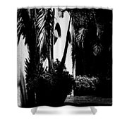 Palms And Arches Shower Curtain