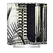 Palms And Columns Shower Curtain