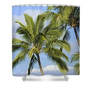 Palms And Mountaintops Shower Curtain