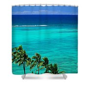 Palms And Ocean Shower Curtain