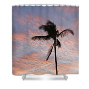 Palms And Pink Clouds Shower Curtain