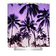 Palms And Purple Sky Shower Curtain