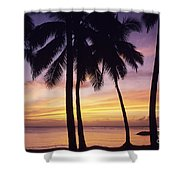 Palms And Sunset Sky Shower Curtain