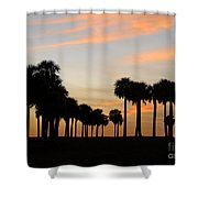 Palms At Sunset Shower Curtain