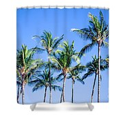Palms In Living Harmony Shower Curtain