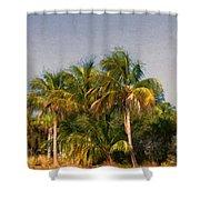 Palms - Naples Florida Shower Curtain
